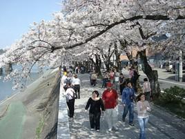 木曽川遊歩道