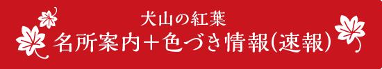 가을의 이누야마 단풍 정보