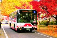 koto-bus