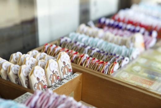 犬山観光協会写真 028