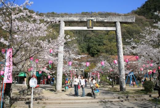 桃太郎公園 IMG_4931
