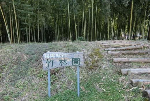 ③羽黒城址竹林園